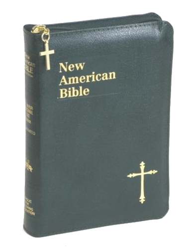 New American Bible St Joseph Personal Small Print Leather Green