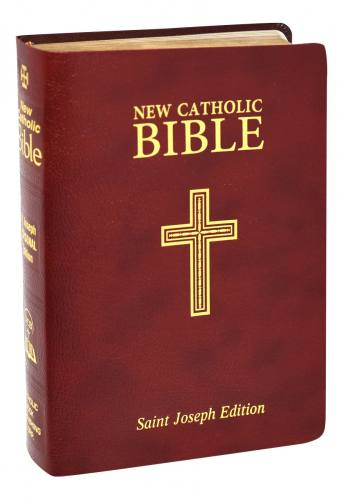 New Catholic Bible St Joseph Regular Print Leather Burgundy
