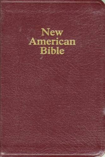 New American Bible World Catholic Regular Print Leather Burgundy